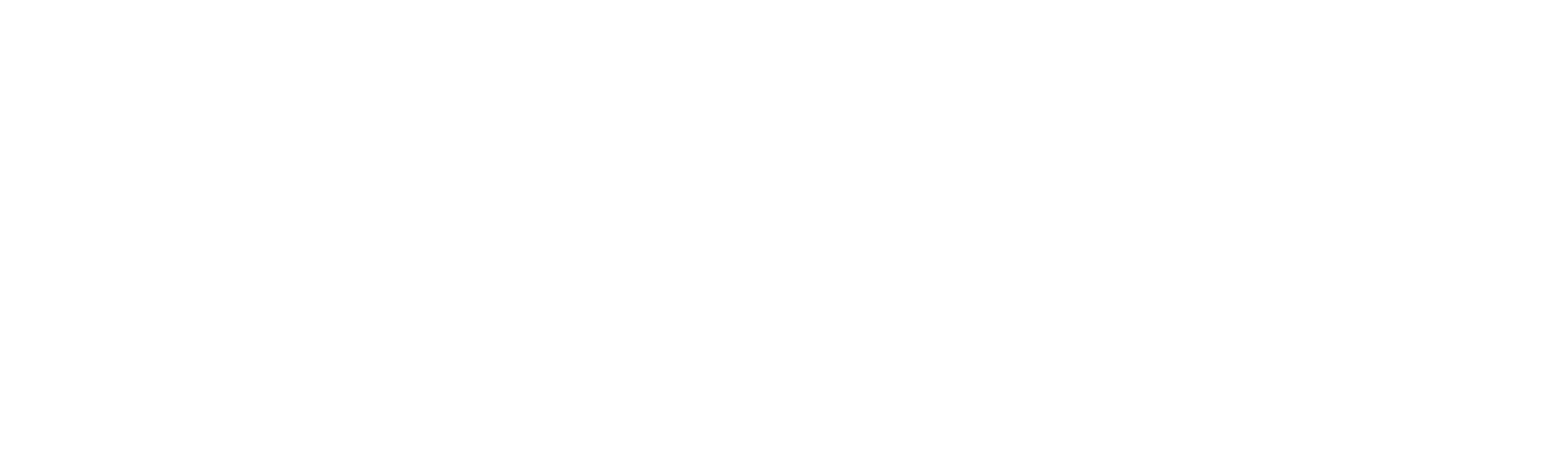 Absoute Systems Logo